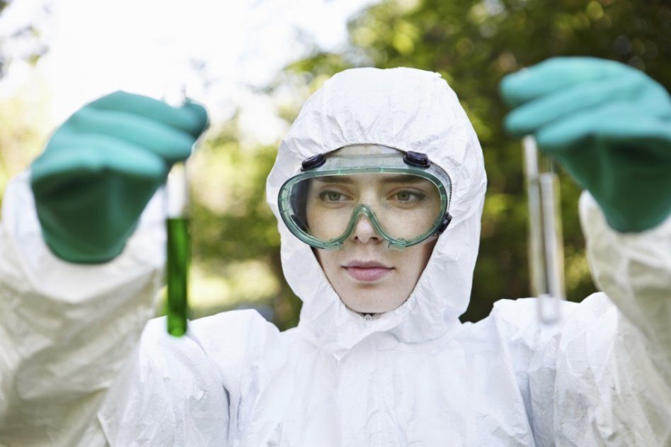 MD Mold Testing Services Washington D.C. picture